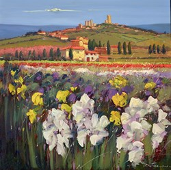 Fiori Selvatici Nel Campo V by Bruno Tinucci - Original Painting on Stretched Canvas sized 28x28 inches. Available from Whitewall Galleries